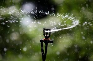 Sprinkler Irrigation - Sprinkler head