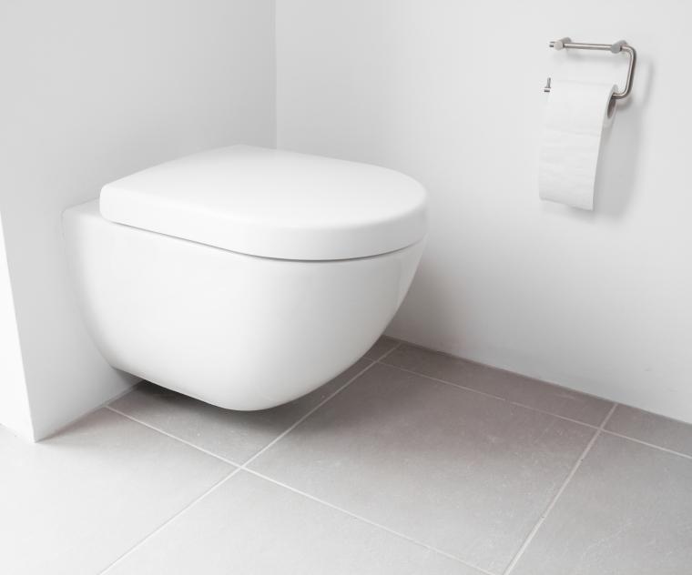 installer des toilettes suspendues maison jardin. Black Bedroom Furniture Sets. Home Design Ideas
