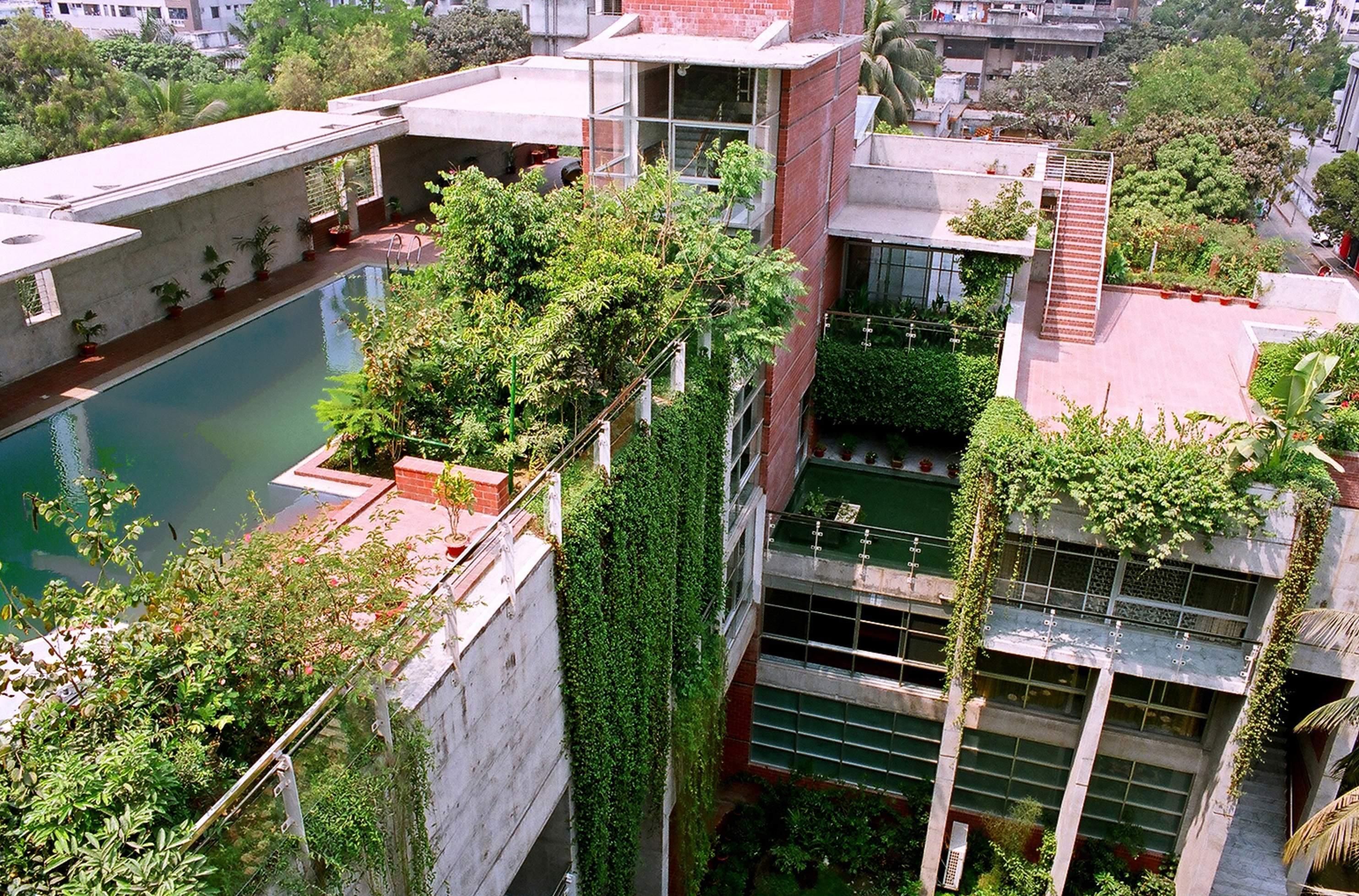 Adopter le toit v g talis en toute simplicit maison jardin - Entretien toit vegetalise ...